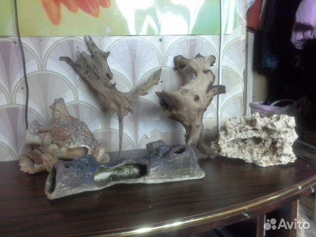 магазинов декор для аквариума купить в москве Почему? только