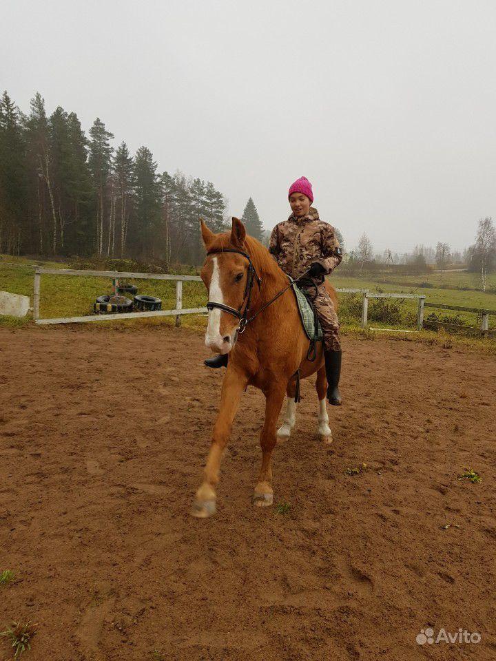 Конные прогулки и занятия верховой ездой купить на Вуёк.ру - фотография № 7