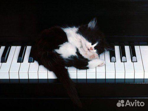 Курсы Игры На Пианино В Москве
