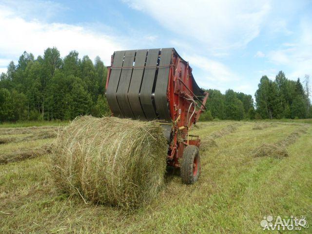 важно продажа сена в старобачаты белье