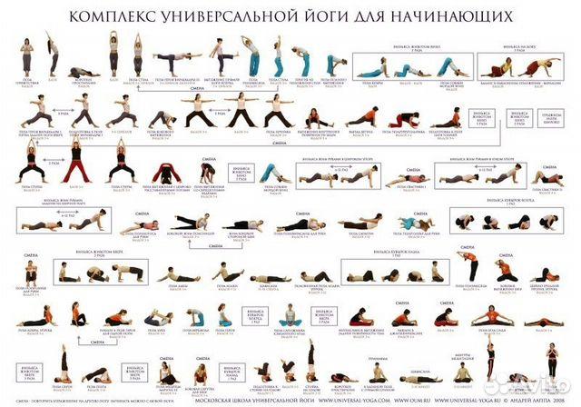 скачать хатха-йога для начинающих бесплатно