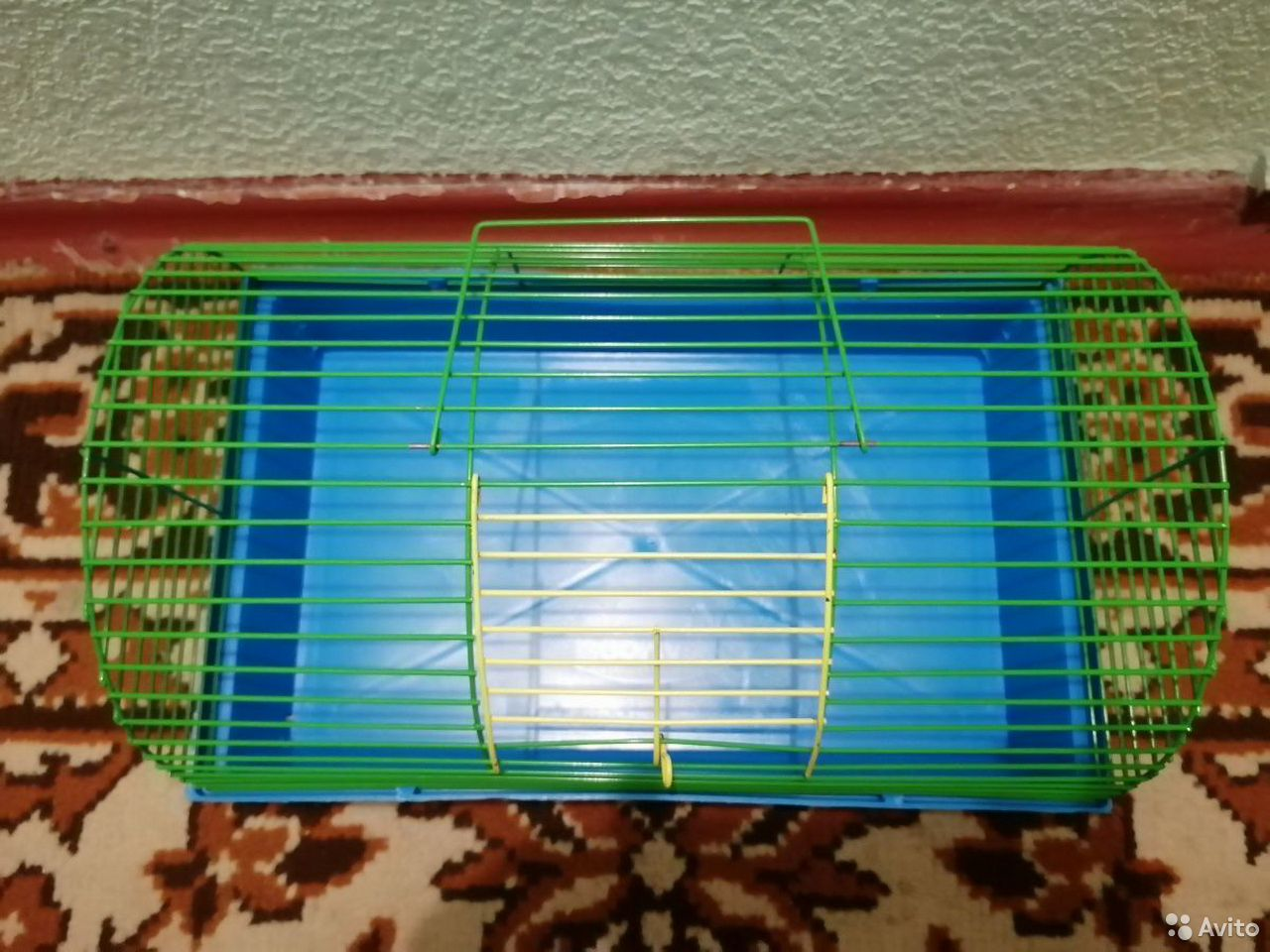 Cage for rodents  89621631169 buy 2